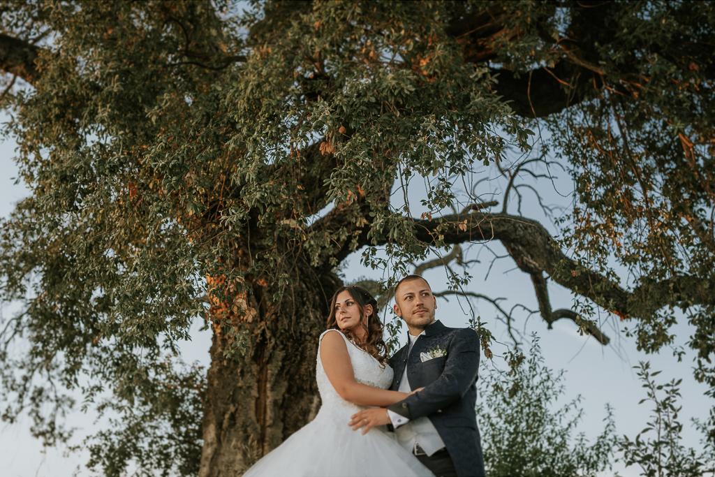abbraccio sotto l'albero degli sposi di matrimonio a roma